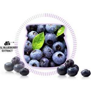 Crema hidratanta cu extract de afine, Blueberry Hydrating Cream mini   Frudia
