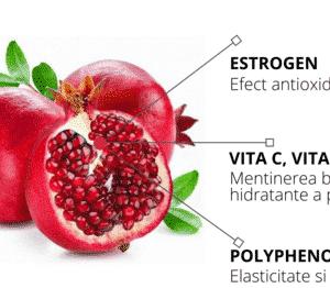 Lotiune tonica cu extract de rodie, Pomegranate Nutri-Moisturizing Toner   Frudia